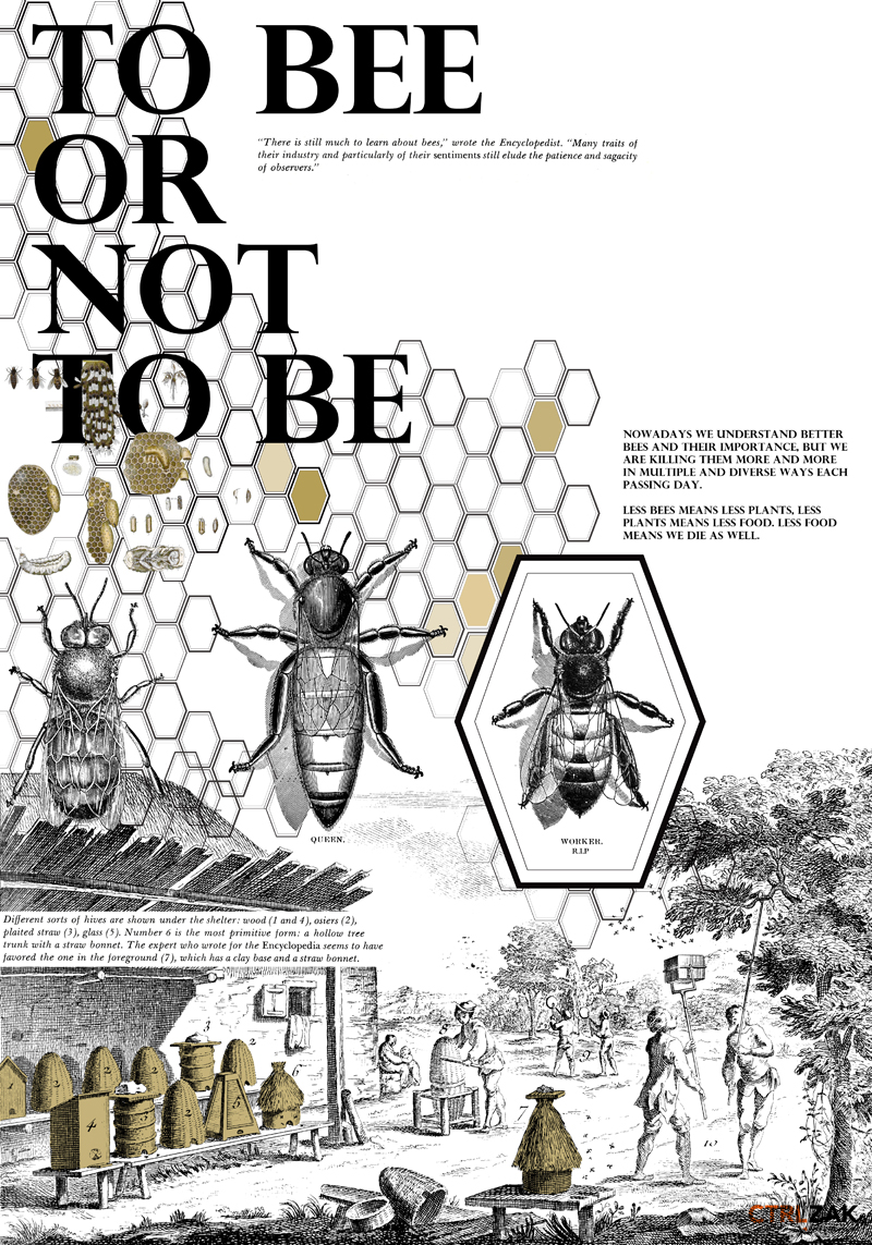 ctrlzak - Bee awareness project by CTRLZAK for Green Island 2015